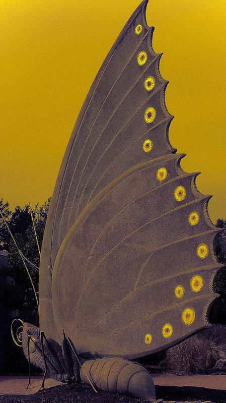 Butterfly Poster featuring the digital art Golden Wings by Kendra Steiner