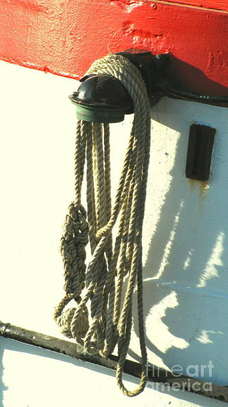 Ropes Poster featuring the photograph Sailor's Knot by Colleen Kammerer