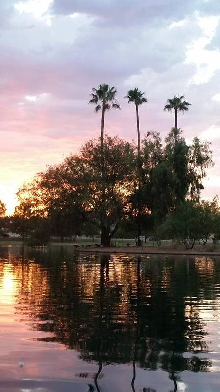 Scottsdale Poster featuring the photograph Sunset Island In Chaparral Lake Vertical by Heather Kirk