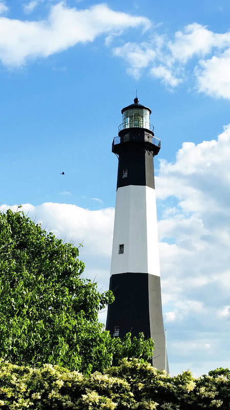 Poster featuring the photograph Tybee Light by Belinda Jane