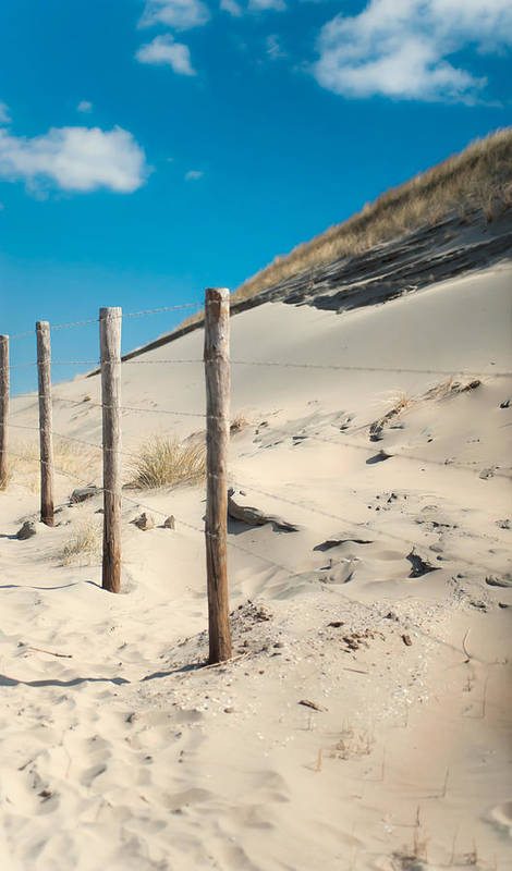 Ature Poster featuring the photograph Coastal Dunes In Holland 2 by Jenny Rainbow