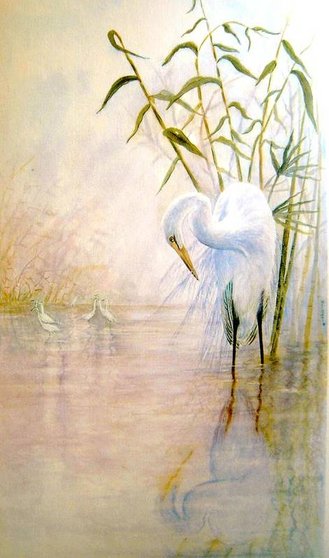 Eret; Bird; Low Country Poster featuring the painting Egret by Ben Kiger