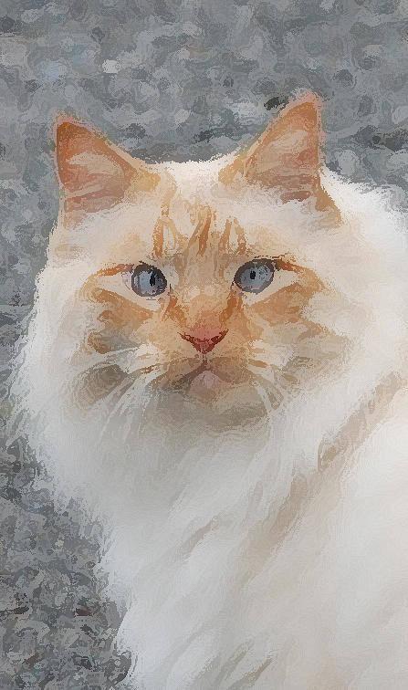 Cat Poster featuring the photograph Fat Cats Of Ballard II Greeting Card by Carol Eliassen
