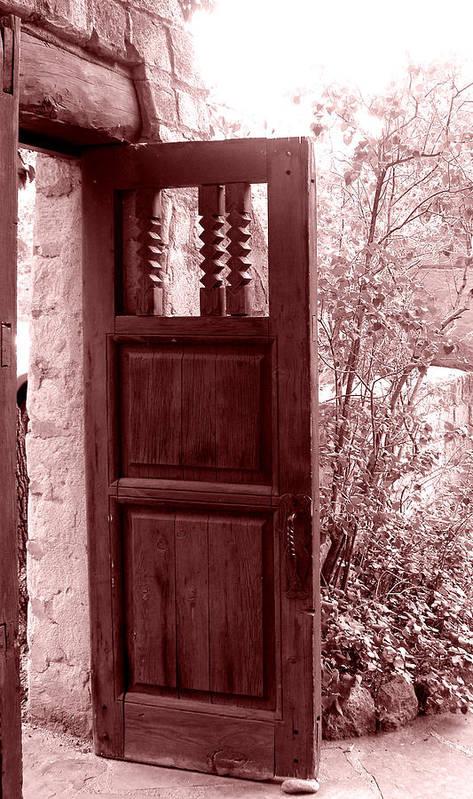 Door Poster featuring the photograph The Door by Wayne Potrafka
