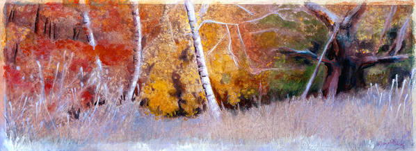 Poster featuring the painting Birches IIi by Bezalel-Levy