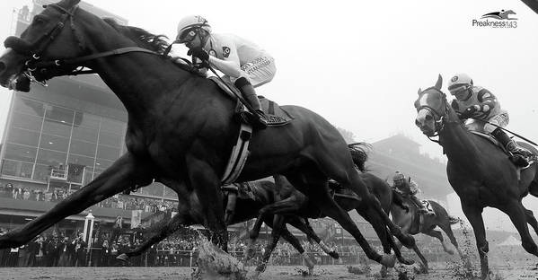 Preakness Stakes, Justify, 2018 by Thomas Pollart