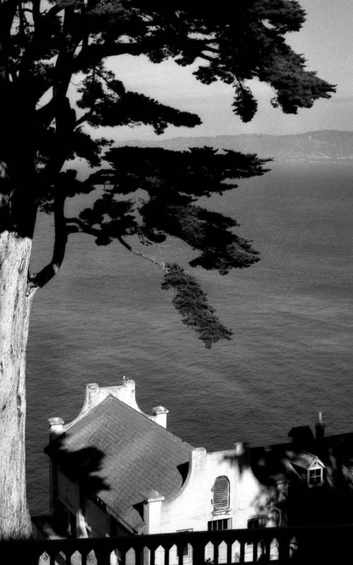 Alcatraz Poster featuring the photograph View From Alcatraz by Todd Fox