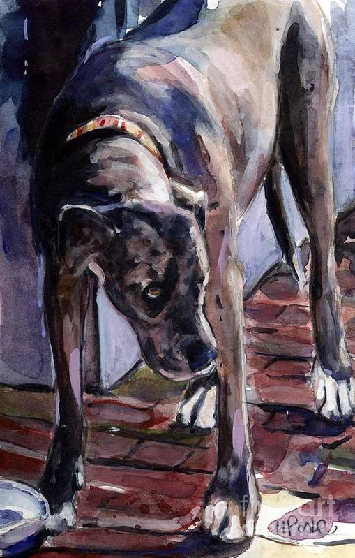 Dog Poster featuring the painting Legs by Molly Poole