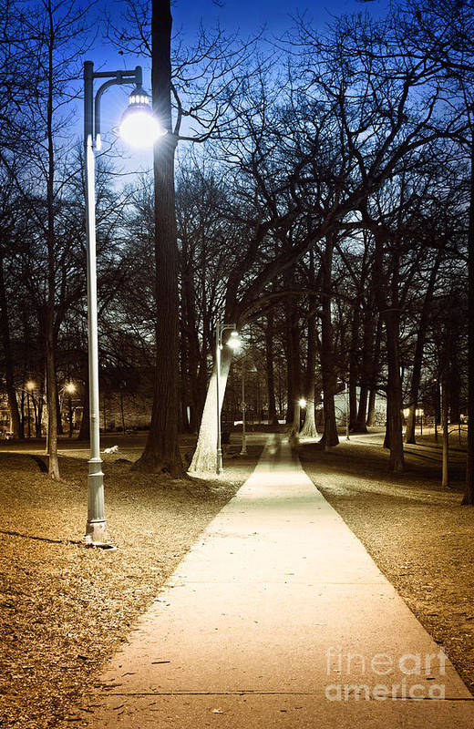 Park Poster featuring the photograph Park Path At Night by Elena Elisseeva