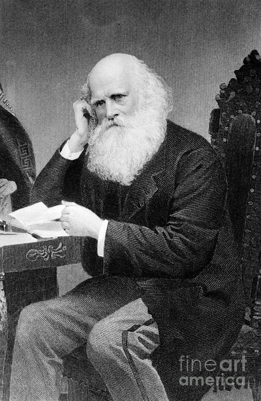 History Poster featuring the photograph William Cullen Bryant, American Poet by Photo Researchers