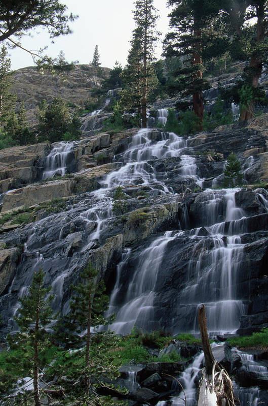 Waterfall Poster featuring the photograph Snow Melt Runoff - Goddard Canyon by Soli Deo Gloria Wilderness And Wildlife Photography