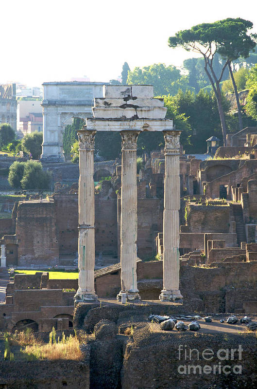 Worth Poster featuring the photograph Temple Of Vesta Arch Of Titus. Temple Of Castor And Pollux. Forum Romanum by Bernard Jaubert