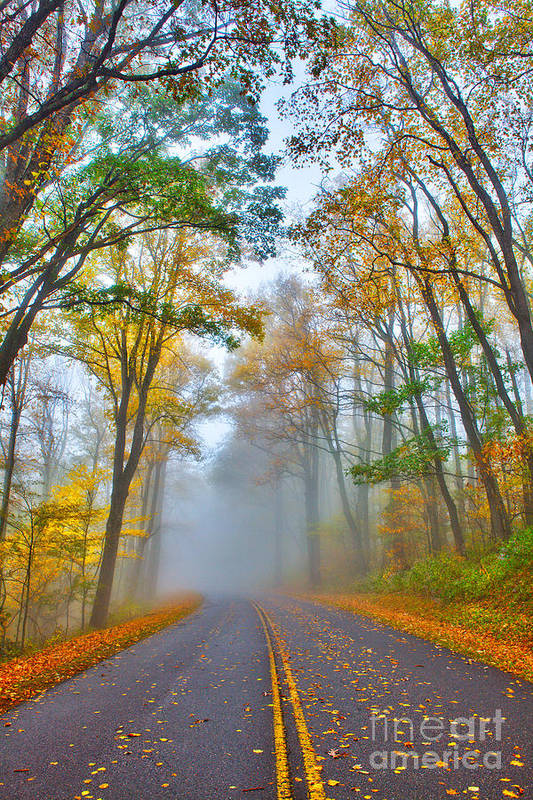North Carolina Poster featuring the photograph A Foggy Drive Into Autumn - Blue Ridge Parkway by Dan Carmichael