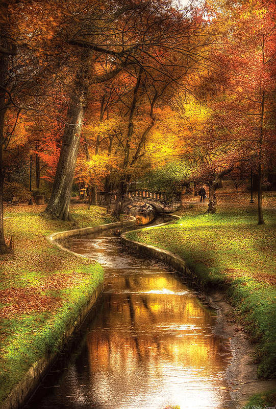 Savad Poster featuring the photograph Autumn - Landscape - By A Little Bridge by Mike Savad