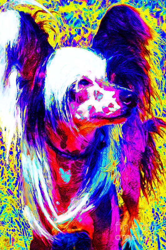 Animal Poster featuring the photograph Chinese Crested Dog 20130125v1 by Wingsdomain Art and Photography