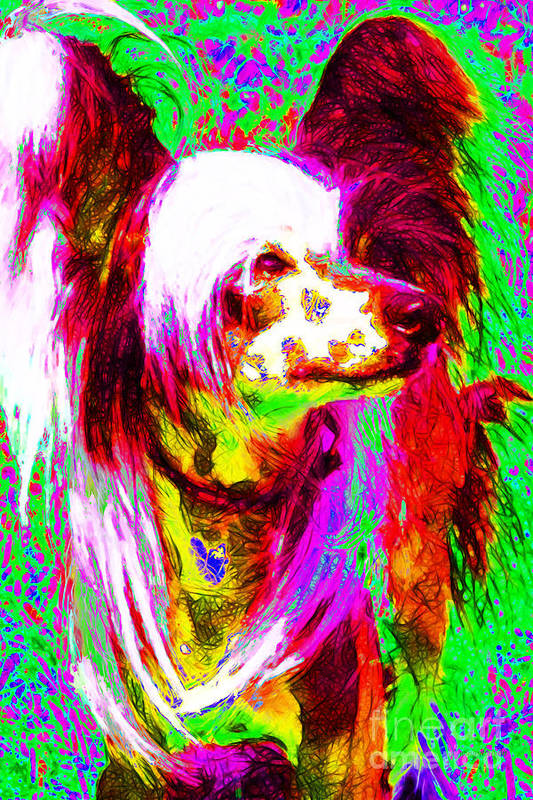 Animal Poster featuring the photograph Chinese Crested Dog 20130125v2 by Wingsdomain Art and Photography
