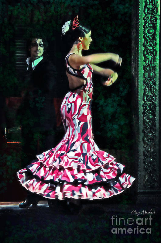 Flamenco Poster featuring the photograph Flamenco Series No. 10 by Mary Machare