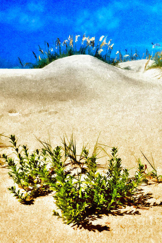Outer Banks Poster featuring the painting Flowering Dunes - Outer Banks by Dan Carmichael