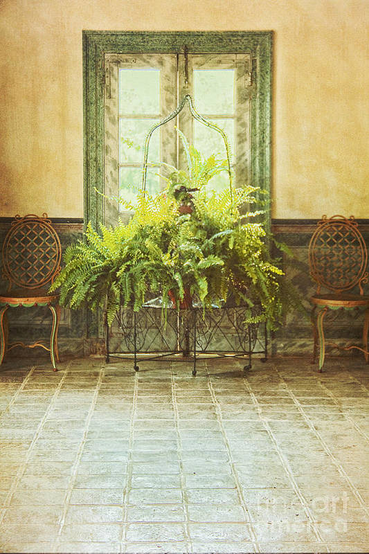 Chairs Poster featuring the photograph Green House by Margie Hurwich