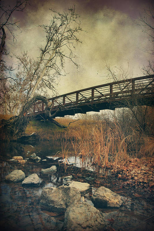Sycamore Grove Park Poster featuring the photograph I Tried To Forget You by Laurie Search