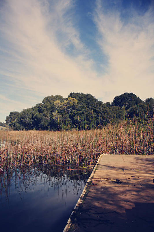 Lafayette Reservoir Recreation Area Poster featuring the photograph Just To Make This Dock My Home by Laurie Search