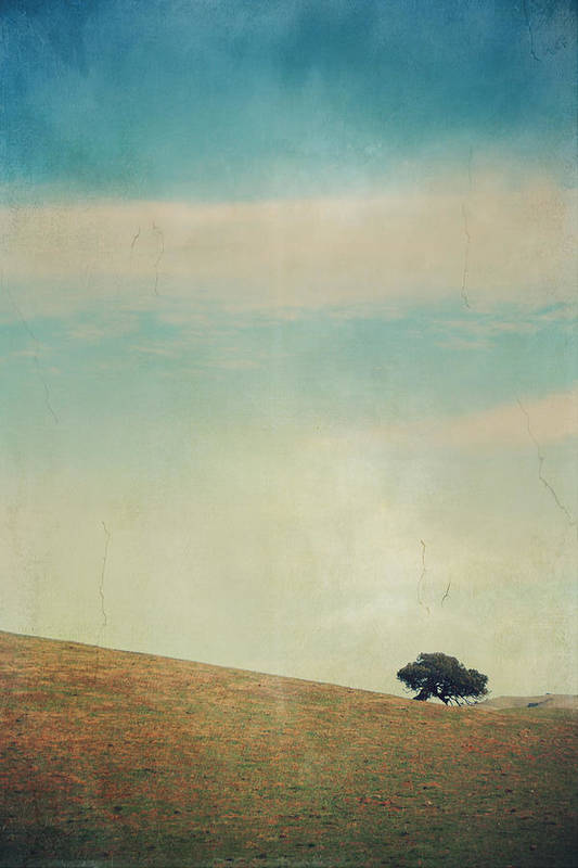Landscapes Poster featuring the photograph Love Your Own Company by Laurie Search