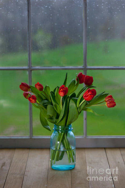 Tulips Poster featuring the photograph Mason Jar With Tulips by Kay Pickens