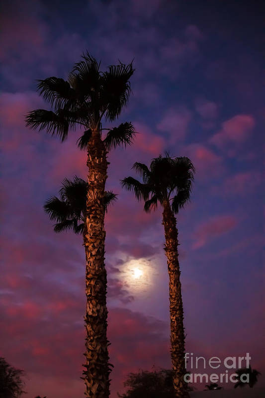 Sunrise Poster featuring the photograph Morning Moon by Robert Bales