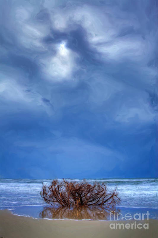 Driftwood Poster featuring the painting Outer Banks - Driftwood Bush On Beach In Surf II by Dan Carmichael
