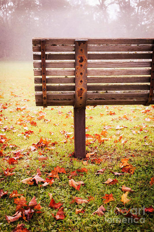Bench Poster featuring the photograph Park Bench In Autumn by Edward Fielding