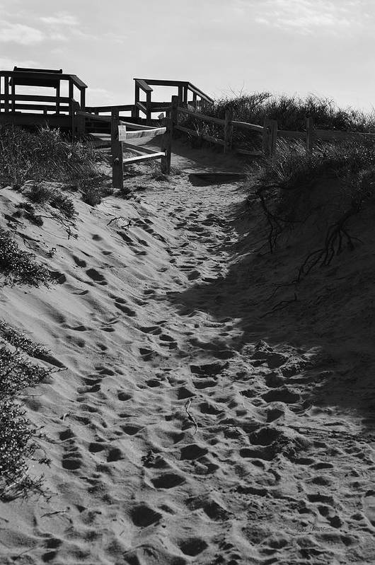 Dunes Poster featuring the photograph Pathway Through The Dunes by Luke Moore