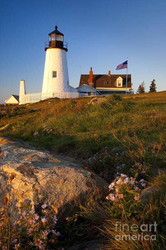 Pemaquid Point Poster featuring the photograph Pemaquid Point Lighthouse by Brian Jannsen