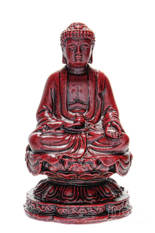Buddha Poster featuring the photograph Sitting Buddha by Olivier Le Queinec