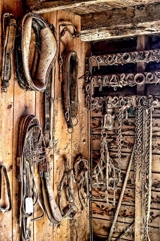 Tack Poster featuring the photograph The Old Tack Room by Olivier Le Queinec