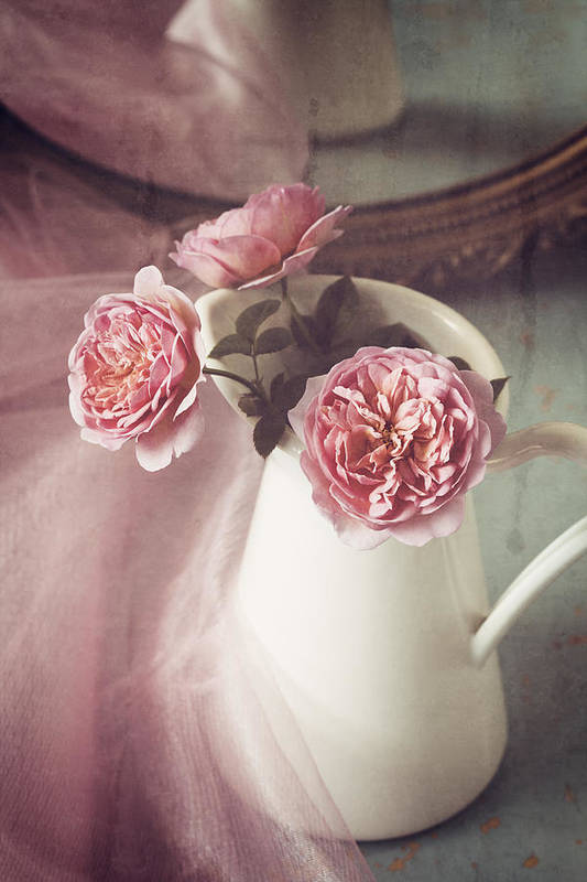 Rose Poster featuring the photograph Vintage Pink by Amy Weiss