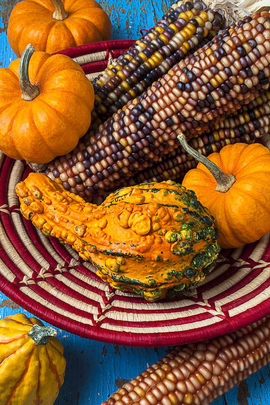 Gourd Poster featuring the photograph Autumn Basket by Garry Gay
