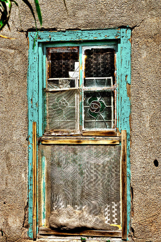 New Mexico Poster featuring the photograph Cat In The Window by David Patterson