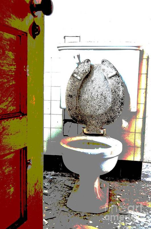 Toilet Poster featuring the photograph Dirty Seat by Luke Moore