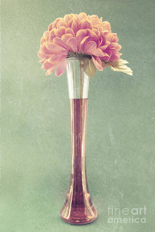 still Life Poster featuring the photograph Estillo Vase - S01t04 by Variance Collections