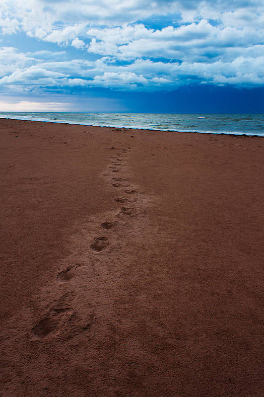 Scenic Poster featuring the photograph Foot Prints To The Sea by Matt Dobson