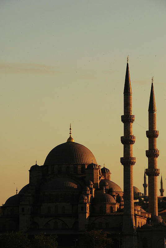 Vertical Poster featuring the photograph Istanbul Yeni Cami (new Mosque) by Andrea Cavallini