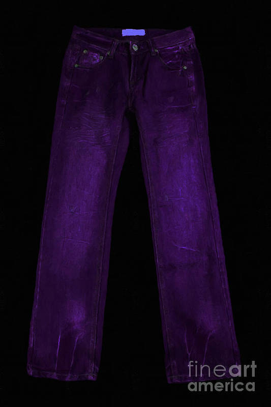 Purple Poster featuring the photograph Pair Of Jeans 4 - Painterly by Wingsdomain Art and Photography