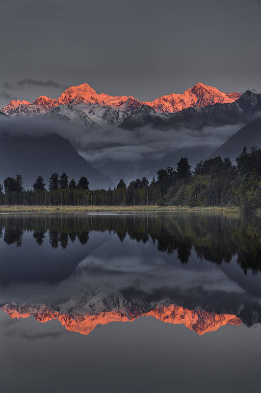 00462453 Poster featuring the photograph Sunset Reflection Of Lake Matheson by Colin Monteath