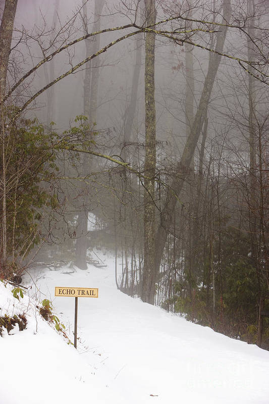 Cold Poster featuring the photograph Trailhead Covered With Snow by Will and Deni McIntyre