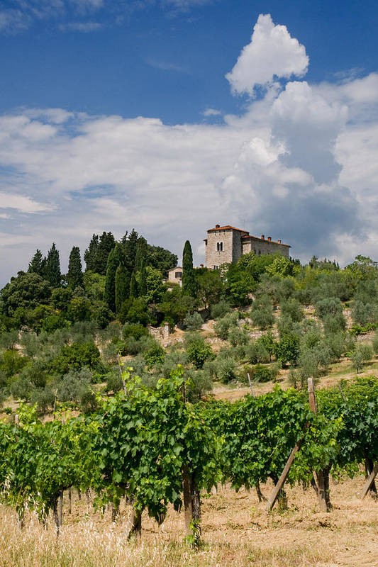 Agriculture Poster featuring the photograph Tuscany Villa In Tuscany Italy by Ulrich Schade