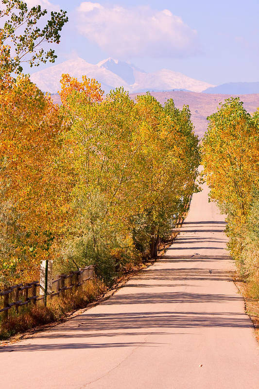 Rockymountains Poster featuring the photograph A Colorful Country Road Rocky Mountain Autumn View by James BO Insogna