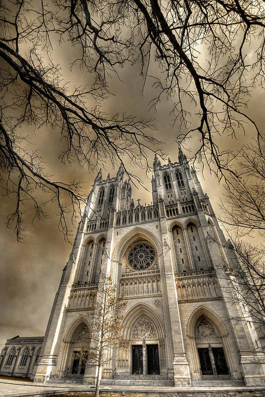 Washington National Cathedral Poster featuring the photograph Evil Arms by Lori Deiter