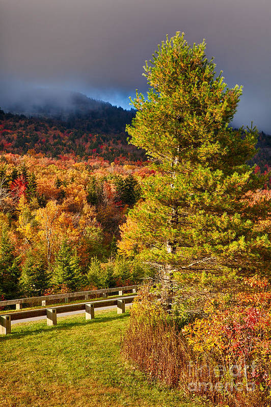 Fall Colors Poster featuring the photograph Fall Colors On Grandfather Mountain by Dan Carmichael