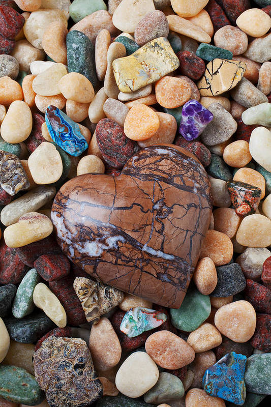 Heart Hearts Poster featuring the photograph Heart Stone Among River Stones by Garry Gay