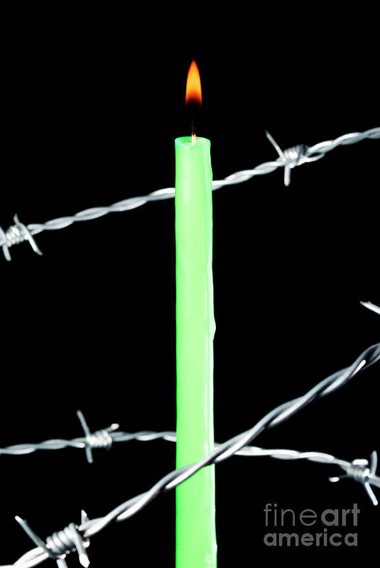 Barbed Wire Poster featuring the photograph Lit Candle Surrounded By Barbed Wire by Sami Sarkis